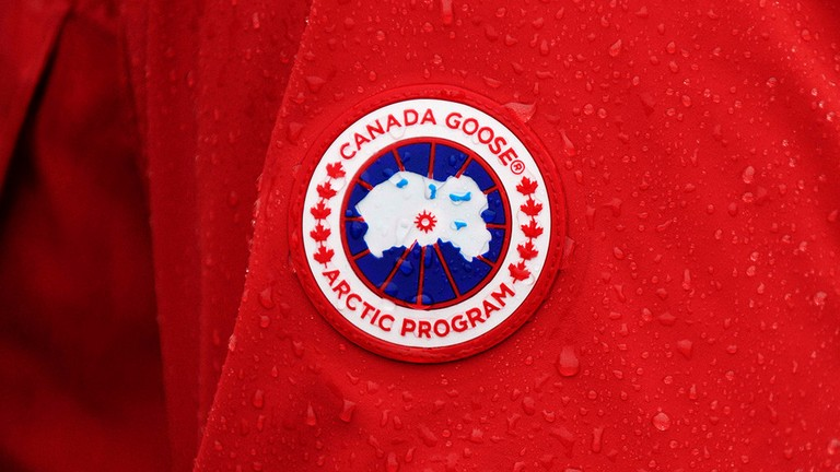 Canada Goose Banner Image Photo